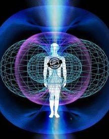 quantum_field